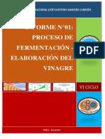 INFORME N°01 ELABORACIÓN DEL VINAGRE