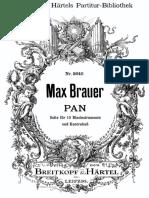 Pan - Brauer.pdf