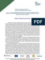 Principii (1).doc