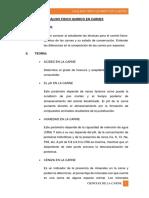 178017131 Analisis Fidico Quimico de La Carne Imprimir