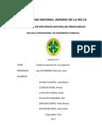 Informe Industria Cajoneria 1