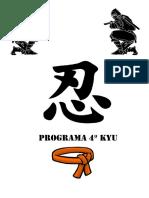 4º kyu