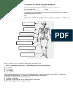 Evaluación Sumativa de Ciencias Naturales 4to Básico