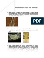 Practica 6 Microbiologia