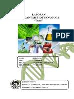 Laporan Pengantar Bioteknologi Tapai