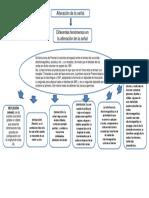 señales y perturbacion.pptx