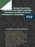 Presentación1microbiologia