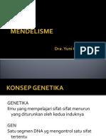 Mendel is Me