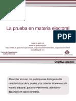 La Prueba en Material Electoral
