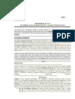 517.Constitucion de Vilma Alfaro%5b1%5d