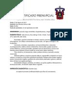Certificado Médico Prenupcial (ejemplo)