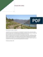 Valles Vitivinicolas de Chile