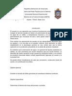 Unitaria 2 Informe-1 (1)