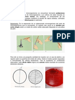 Tecnicas_de_siembra.docx