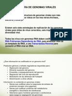 3- Estructura de Genomas Virales