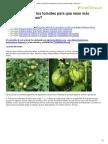 ¿Cómo Se Podan Los Tomates Para Que Sean Más Grandes y Sabrosos