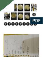 Gambar Identifikasi bakteri