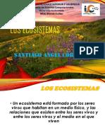 DESARROLLO SUSTENTABLE Los Ecosistemas y Flujo de Energía