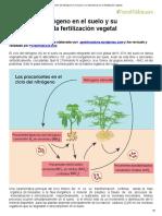 El Ciclo Del Nitrógeno en El Suelo y Su Importancia en La Fertilización Vegetal