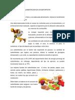alimentacion-en-un-deportista