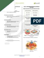 149 Envoltorios Celulares e Citoplasma - Resumo