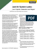 Kaeser Leaks White Paper - Web-tcm9-327154
