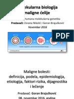 Molekularna Biologija Maligne Celije 2016