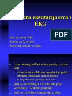 02) Ritmična Ekscitacija Srca i EKG