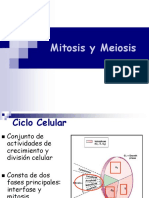Mitosis y Meiosis i y II