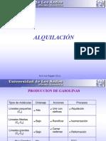 Gasolinas_procesos_QI.pdf