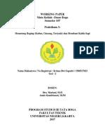 Working Paper 3 Krisna