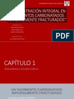 5. Administración Integral en Yacimientos Carbonatados Naturalmente Fracturados