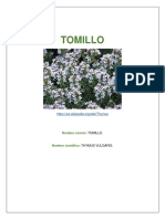 taxonomia 4 periodo.docx