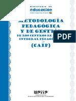 Metodología Del Programa CAIP