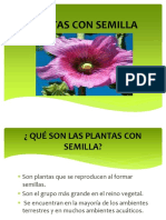 plantasconsemilla-161106204037