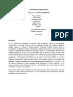 Calibrador informe