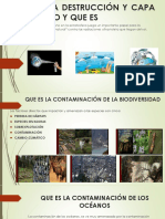 medio ambiente.pptx