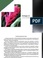 b20 Exercciosdebiologia10 120503045217 Phpapp02