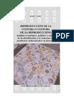 Libro Música en Internet Juan C Calvi