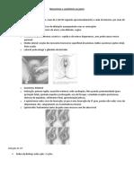 Mecanismo e assistencia ao parto.pdf