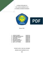 LP+ASKEP GNS.docx