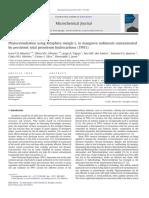 Phytoremediation Using Rizophora Mangle