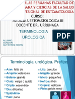 terminologia urologica