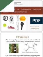 La Industria de los Elastómeros.pptx
