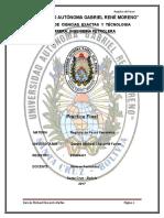PRACTICO FINAL DE REGISTRO trabajo inv.doc