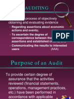 Auditing Presentation