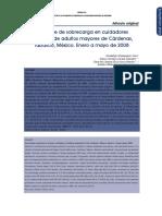sobrecarga_cuidador_de_PM.pdf