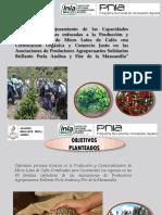 Cultivo de Café-Abonamiento.pptx