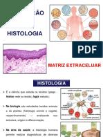Aula 7 - Introdução à Histologia e Matriz Extracelular