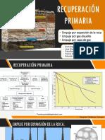 Recuperación PRIMARIA-pdfff